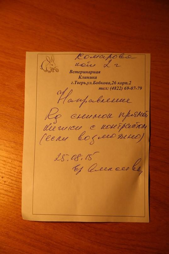 Новости в дергачевском районе харьковской области