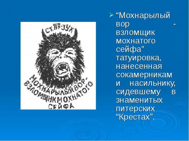 секержицкий антон мечиславович тверь судимость биография