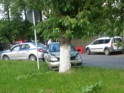 В Кимрах испуганная девушка на Рено врезалась в дерево